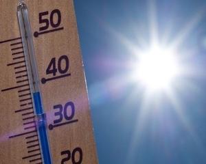 Безопасни условия на труд в горещините следва да осигурят работодателите